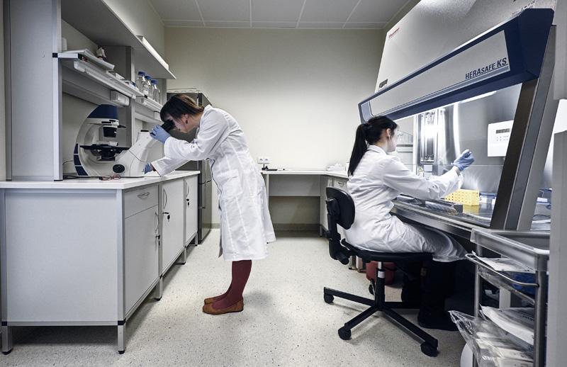 Pracownia Badań Przedklinicznych o Podwyższonym Standardzie, najnowsze laboratorium Centrum Neurobiologii Instytutu Nenckiego, rozpoczyna badania podstawowe służące zrozumieniu molekularnych mechanizmów odpowiedzialnych za choroby neurodegeneracyjne. (Źródło: Instytut Nenckiego, Grzegorz Krzyżewski)